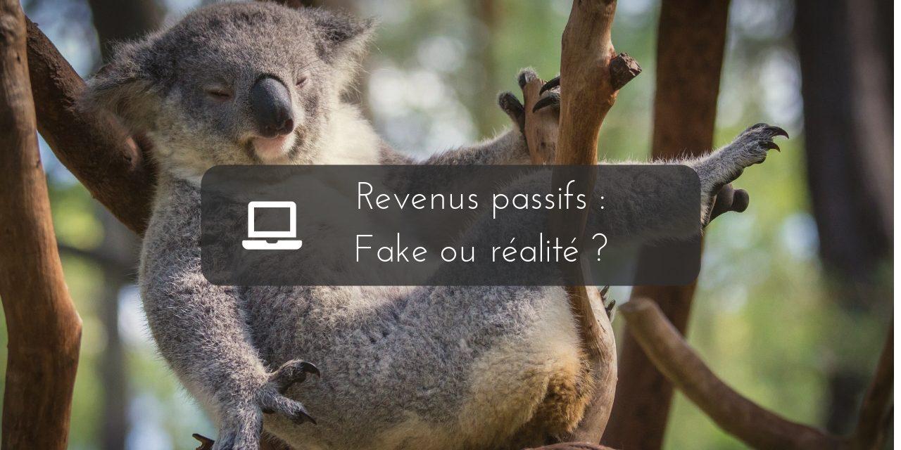 Les revenus passifs fake ou réelle possibilité de gagner sa vie ?